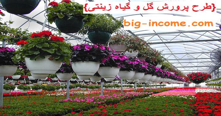 تولید گیاهان زینتی