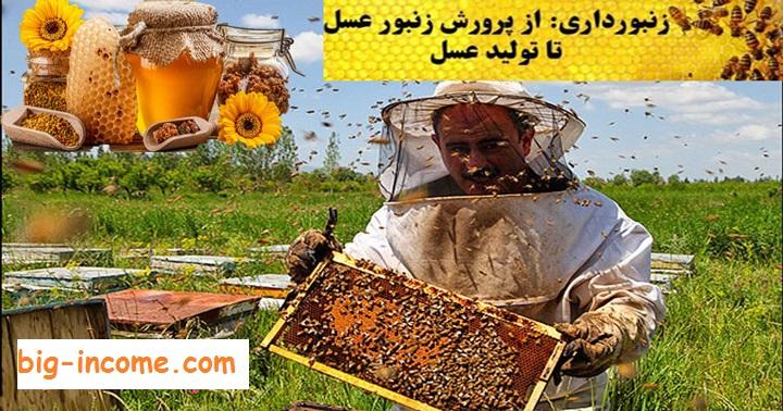 کسب درآمد از زنبورداری