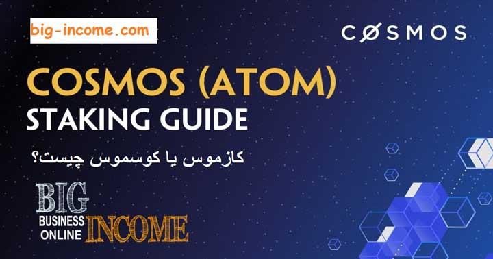 مولفه های شبکه cosmos