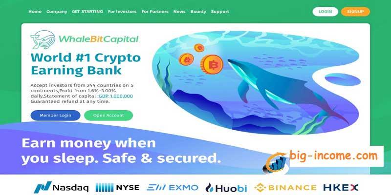 سایت سرمایه گذاری whalebitcapital