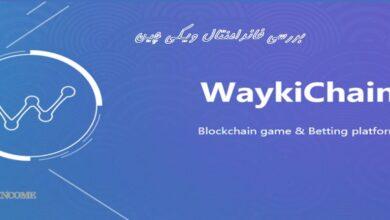 ارز دیجیتال Waykichain