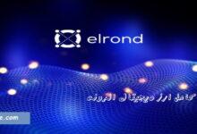 بررسی ارز دیجیتال elrond