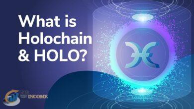 ارز دیجیتال holo chain