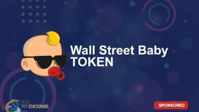 Wall Street Baby چیست؟