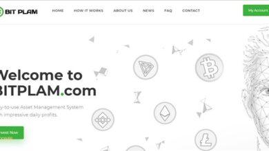 سرمایه گذاری دلاری در سایت bitplam
