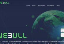 سرمایه گذاری با سود بالا در One-bull