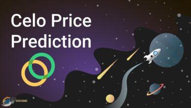 آینده ارز سلو چگونه خواهد بود؟